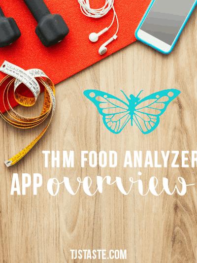 THM Food Analyzer App Overview